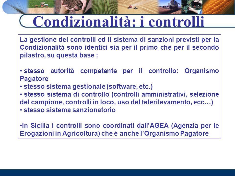 Condizionalità: i controlli La gestione dei controlli ed il sistema di sanzioni previsti per la Condizionalità sono identici sia per il primo che per