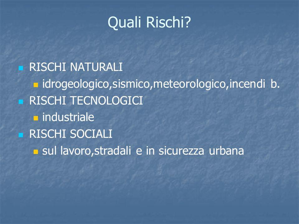 Quali Rischi. RISCHI NATURALI idrogeologico,sismico,meteorologico,incendi b.