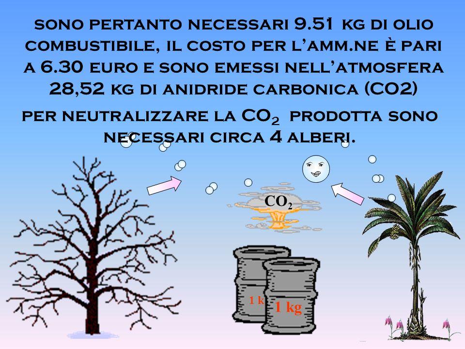 1 k 1 kg CO 2 per neutralizzare la CO 2 prodotta sono necessari circa 4 alberi.