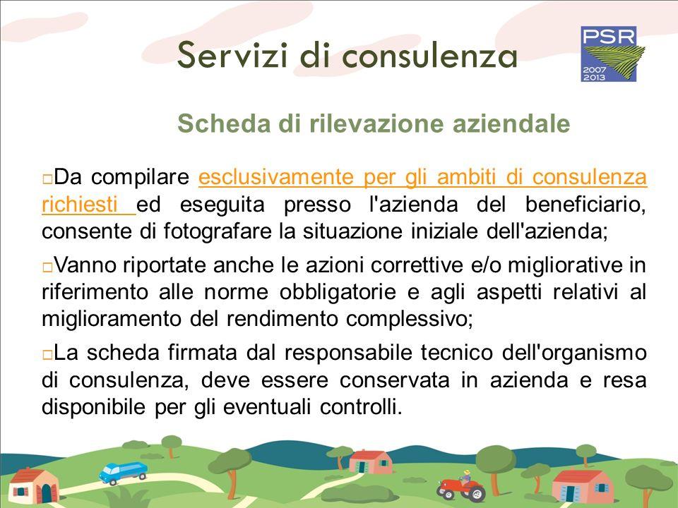 Servizi di consulenza Scheda di rilevazione aziendale Da compilare esclusivamente per gli ambiti di consulenza richiesti ed eseguita presso l'azienda