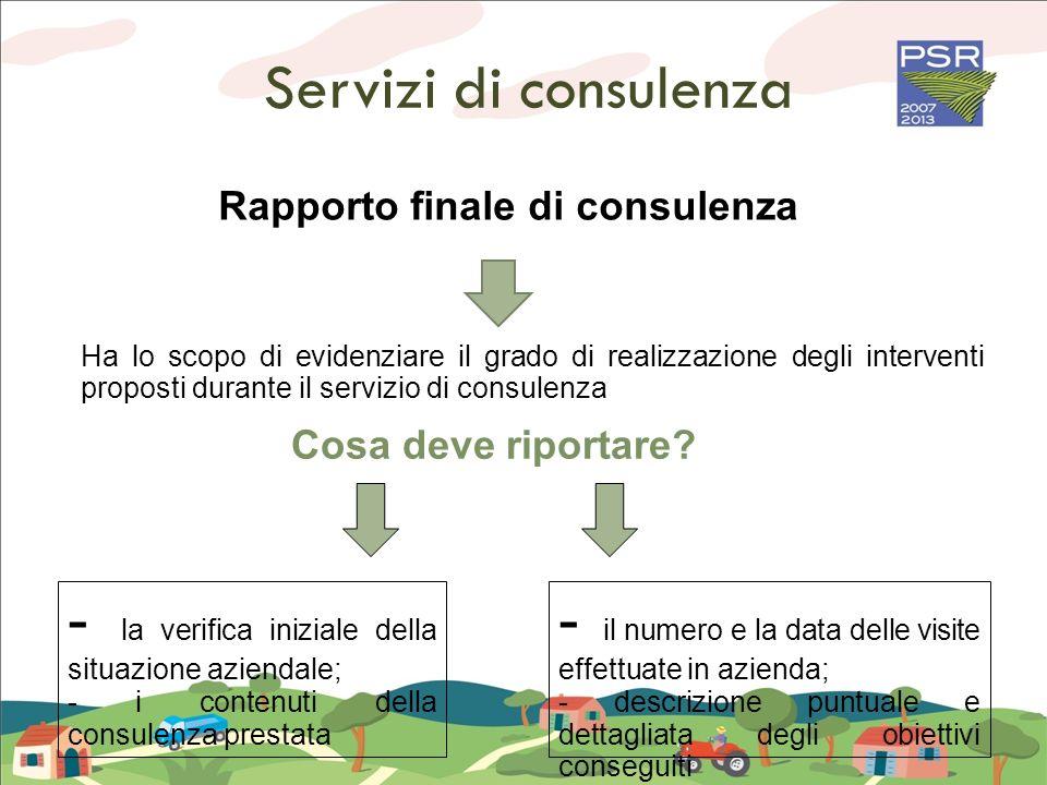 Servizi di consulenza - la verifica iniziale della situazione aziendale; - i contenuti della consulenza prestata - il numero e la data delle visite ef