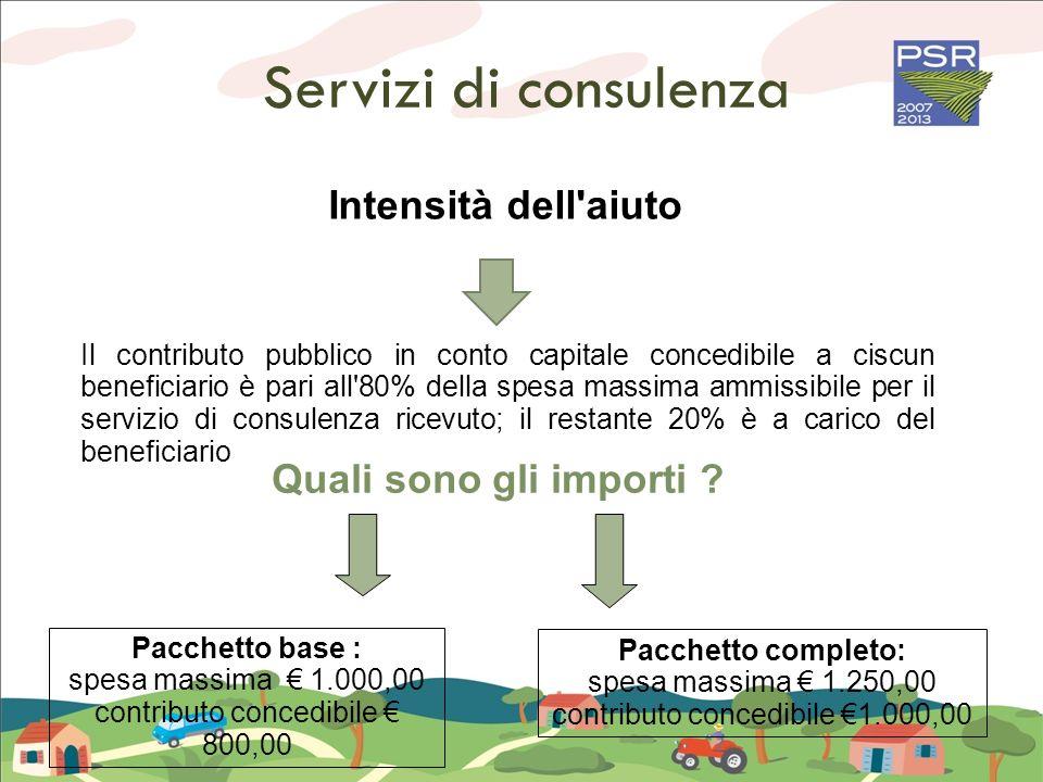 Servizi di consulenza Pacchetto base : spesa massima 1.000,00 contributo concedibile 800,00 Pacchetto completo: spesa massima 1.250,00 contributo conc