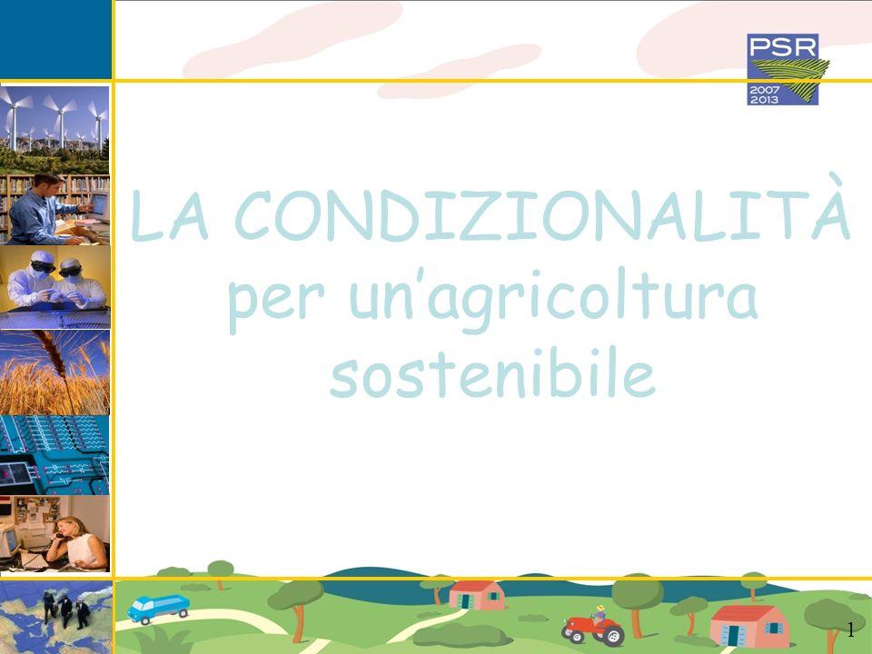 LA CONDIZIONALITA rappresenta linsieme delle norme e delle regole che le aziende agricole devono rispettare per poter accedere ai finanziamenti 12