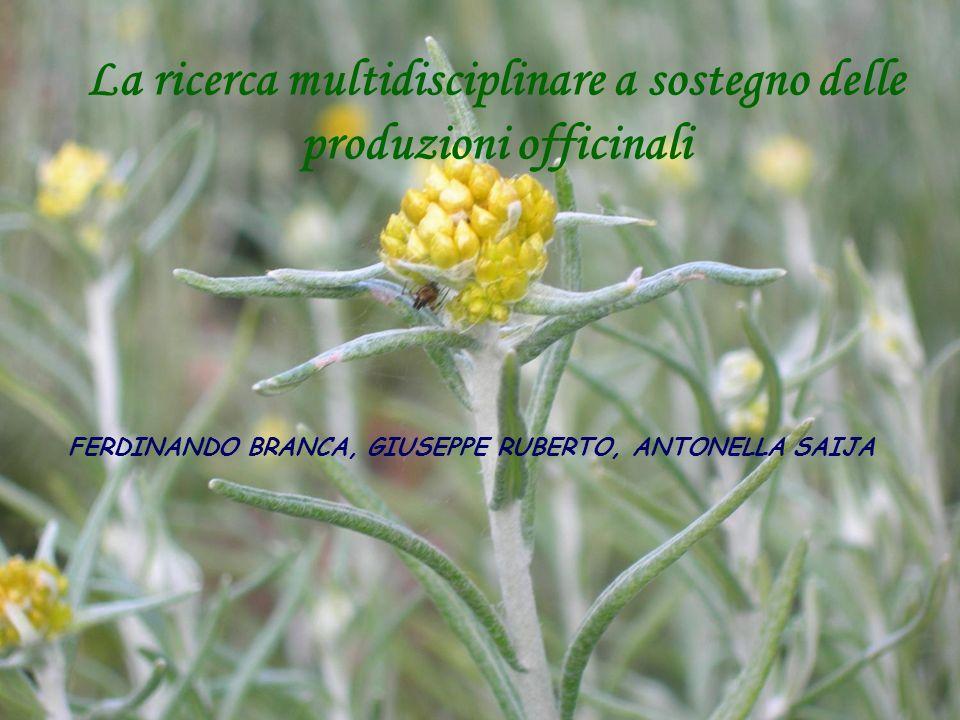 La ricerca multidisciplinare a sostegno delle produzioni officinali FERDINANDO BRANCA, GIUSEPPE RUBERTO, ANTONELLA SAIJA