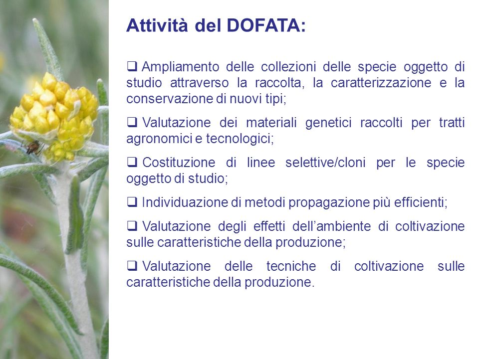 Attività del DOFATA: Ampliamento delle collezioni delle specie oggetto di studio attraverso la raccolta, la caratterizzazione e la conservazione di nu