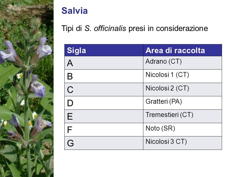 Salvia Tipi di S. officinalis presi in considerazione SiglaArea di raccolta A Adrano (CT) B Nicolosi 1 (CT) C Nicolosi 2 (CT) D Gratteri (PA) E Tremes