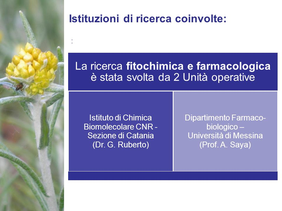Istituzioni di ricerca coinvolte: : La ricerca fitochimica e farmacologica è stata svolta da 2 Unità operative Istituto di Chimica Biomolecolare CNR -