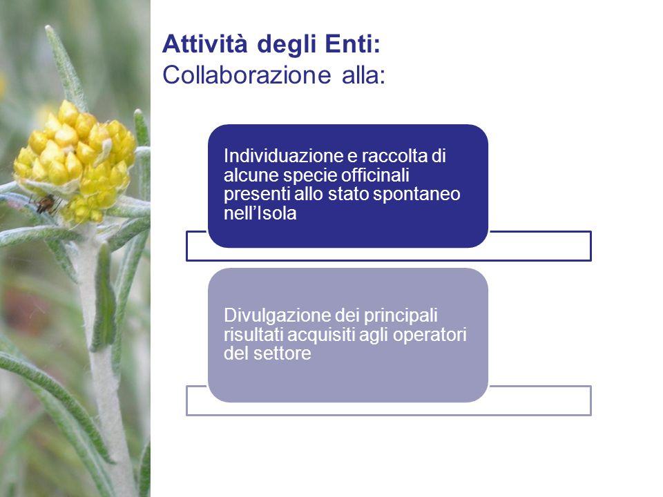 Attività degli Enti: Collaborazione alla: Individuazione e raccolta di alcune specie officinali presenti allo stato spontaneo nellIsola Divulgazione d