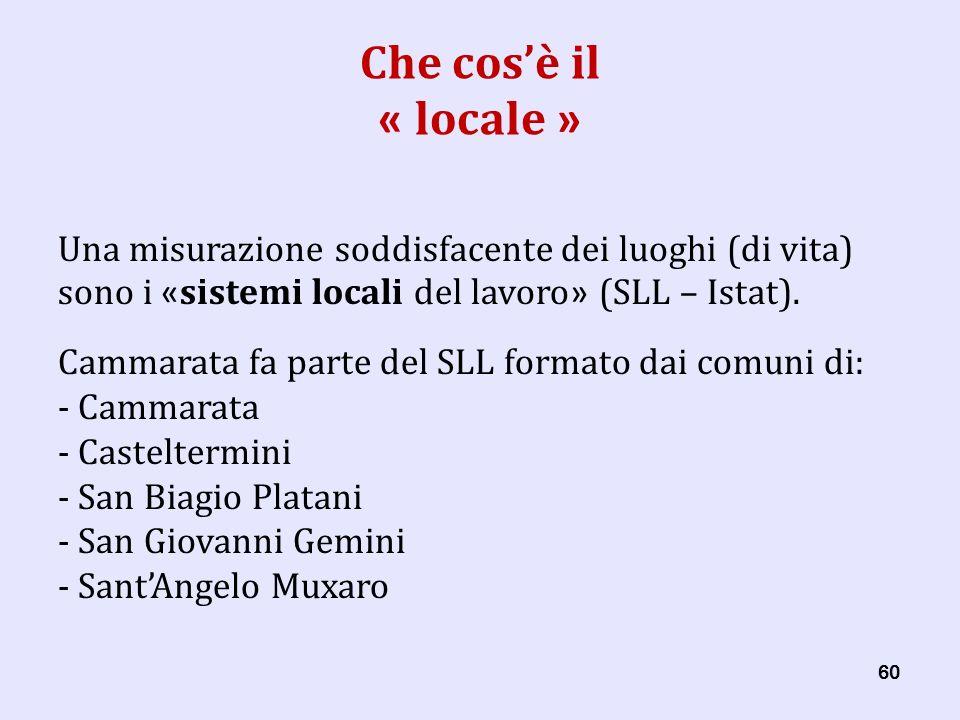 60 Che cosè il « locale » Una misurazione soddisfacente dei luoghi (di vita) sono i « sistemi locali del lavoro » (SLL – Istat).