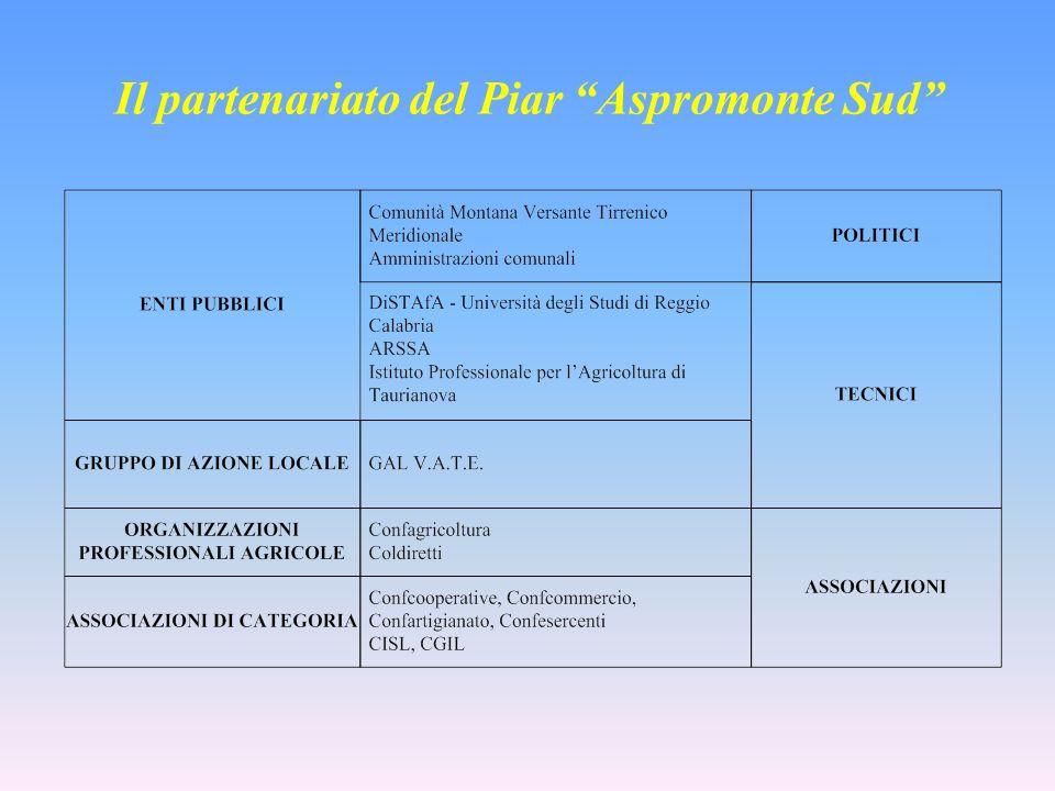Il partenariato del Piar Aspromonte Sud