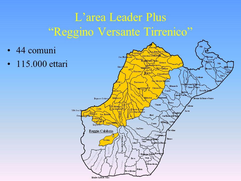 Larea Leader Plus Reggino Versante Tirrenico 44 comuni 115.000 ettari