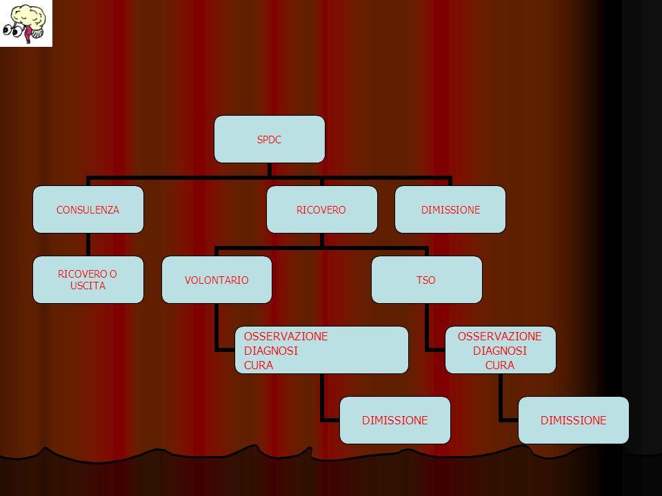 SPDC CONSULENZA RICOVERO O USCITA RICOVERO VOLONTARIO OSSERVAZIONE DIAGNOSI CURA DIMISSIONE TSO OSSERVAZIONE DIAGNOSI CURA DIMISSIONE