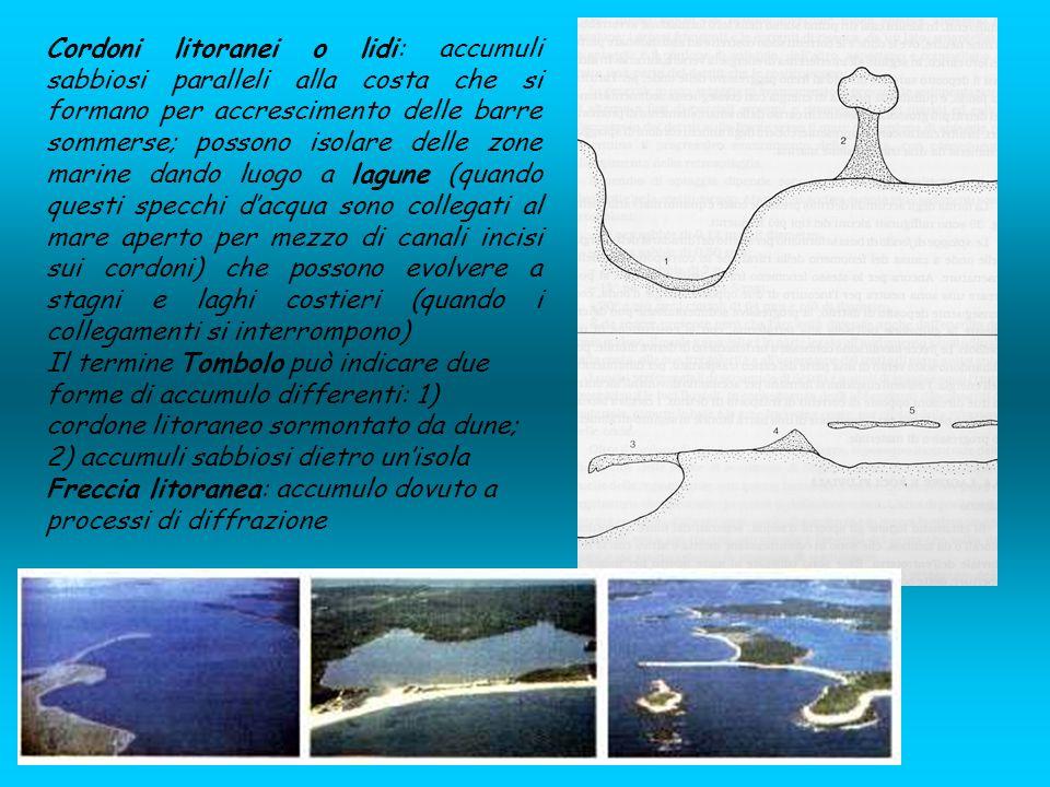 Cordoni litoranei o lidi: accumuli sabbiosi paralleli alla costa che si formano per accrescimento delle barre sommerse; possono isolare delle zone mar