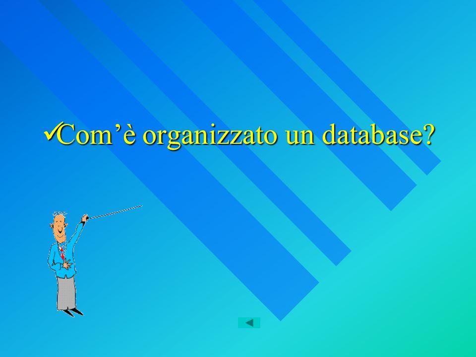 Comè organizzato un database Comè organizzato un database