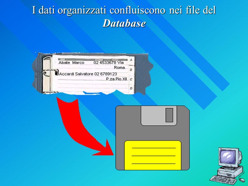 I dati organizzati confluiscono nei file del Database