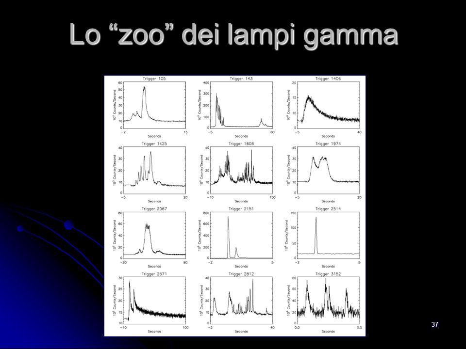 37 Lo zoo dei lampi gamma