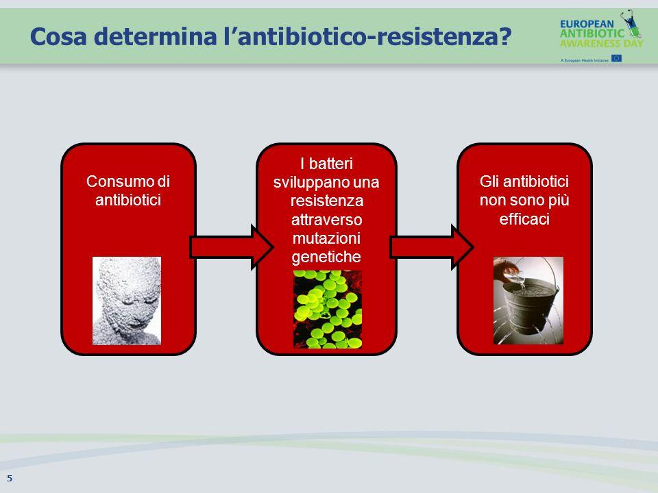 Cosa determina lantibiotico-resistenza? 5 Consumo di antibiotici I batteri sviluppano una resistenza attraverso mutazioni genetiche Gli antibiotici no