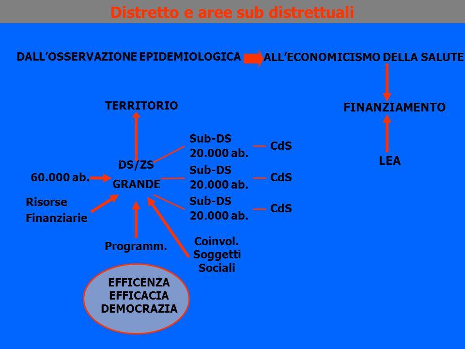 Distretto e aree sub distrettuali DALLOSSERVAZIONE EPIDEMIOLOGICA ALLECONOMICISMO DELLA SALUTE TERRITORIO DS/ZS GRANDE Programm. 60.000 ab. Risorse Fi