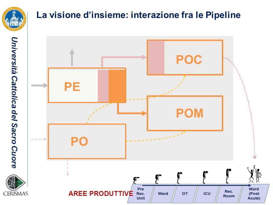 Università Cattolica del Sacro Cuore PE PO POC POM AREE PRODUTTIVE La visione dinsieme: interazione fra le Pipeline