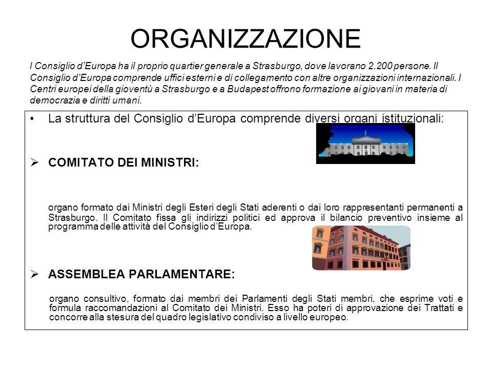 ORGANIZZAZIONE La struttura del Consiglio dEuropa comprende diversi organi istituzionali: COMITATO DEI MINISTRI: organo formato dai Ministri degli Esteri degli Stati aderenti o dai loro rappresentanti permanenti a Strasburgo.