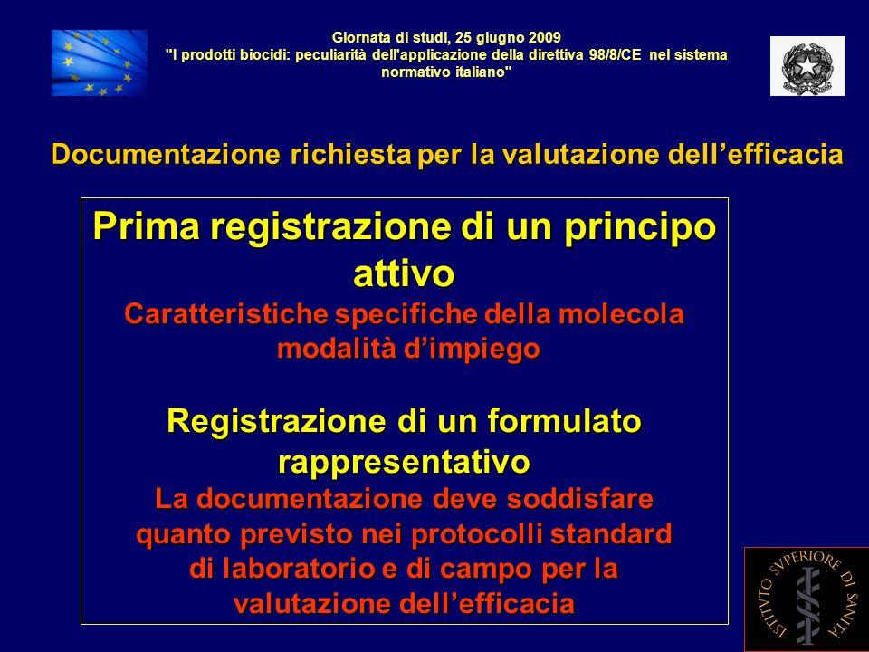 Giornata di studi, 25 giugno 2009 I prodotti biocidi: peculiarità dell applicazione della direttiva 98/8/CE nel sistema normtivo italiano CONCLUSIONI Dove vogliamo arrivare: alla produzione di una documentazione che non sia solo formale e per uso amministrativo, ma che costituisca un idoneo strumento per la valutazione scientifica.