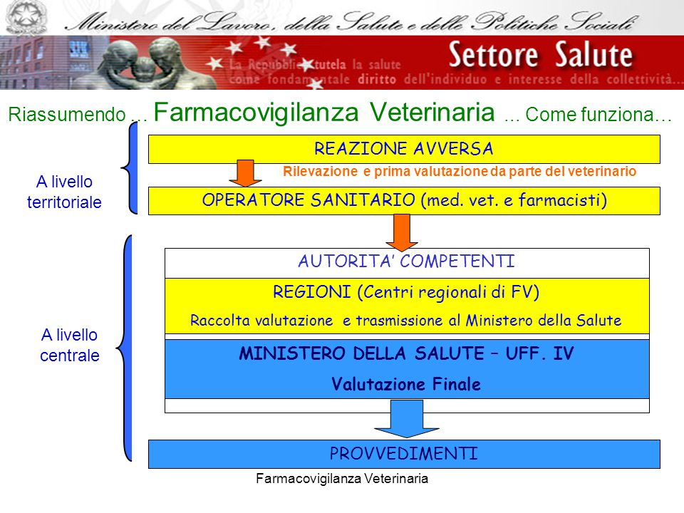 Farmacovigilanza Veterinaria REAZIONE AVVERSA AUTORITA COMPETENTI OPERATORE SANITARIO (med. vet. e farmacisti) PROVVEDIMENTI Riassumendo … Farmacovigi