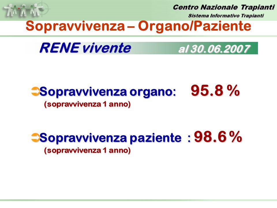 Centro Nazionale Trapianti Sopravvivenza – Organo/Paziente Sopravvivenza organo: 95.8 % Sopravvivenza organo: 95.8 % (sopravvivenza 1 anno) Sopravvivenza paziente : 98.6 % Sopravvivenza paziente : 98.6 % (sopravvivenza 1 anno) RENE vivente al 30.06.2007 Sistema Informativo Trapianti