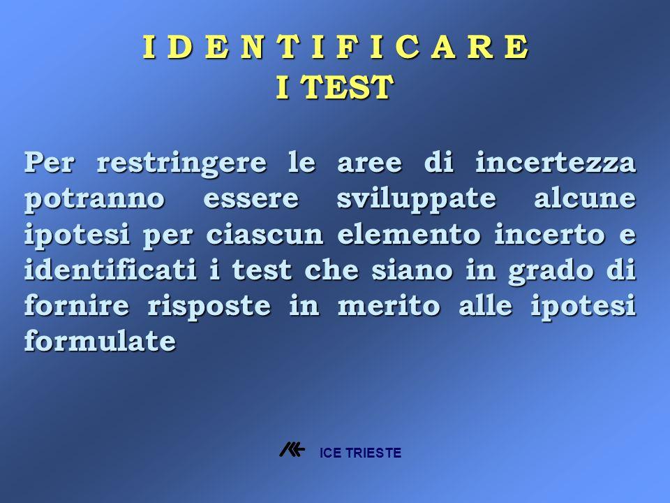 Per restringere le aree di incertezza potranno essere sviluppate alcune ipotesi per ciascun elemento incerto e identificati i test che siano in grado di fornire risposte in merito alle ipotesi formulate I D E N T I F I C A R E I TEST ICE TRIESTE