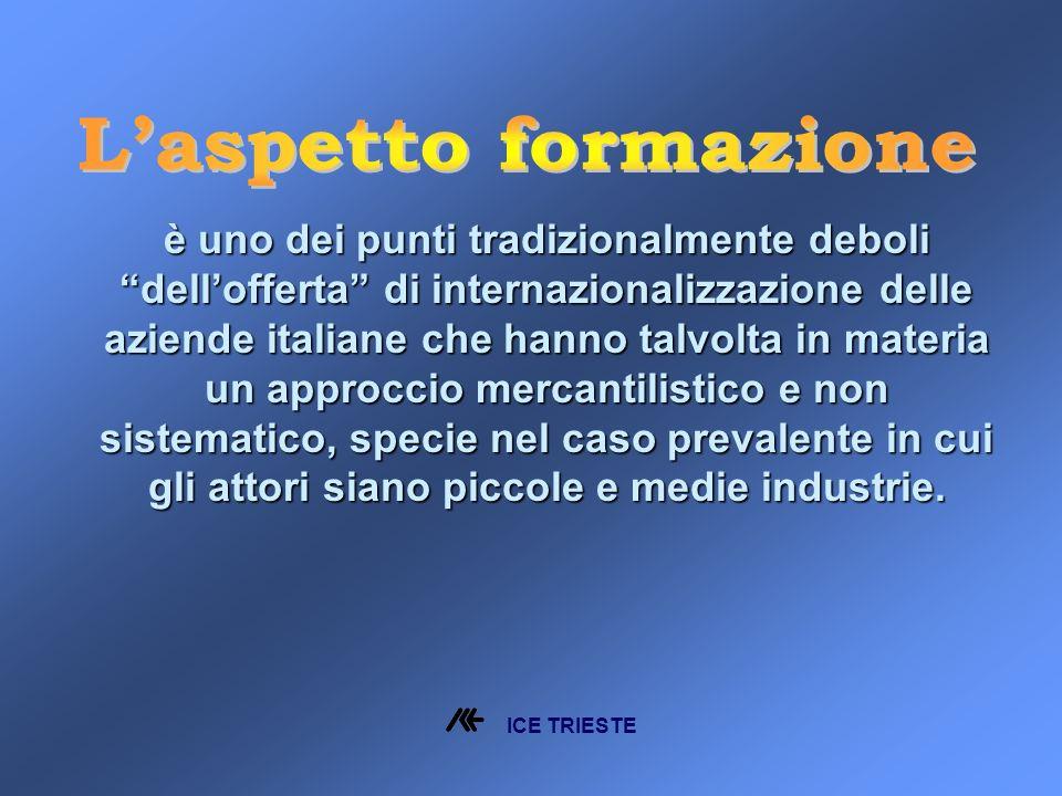 è uno dei punti tradizionalmente deboli dellofferta di internazionalizzazione delle aziende italiane che hanno talvolta in materia un approccio mercantilistico e non sistematico, specie nel caso prevalente in cui gli attori siano piccole e medie industrie.