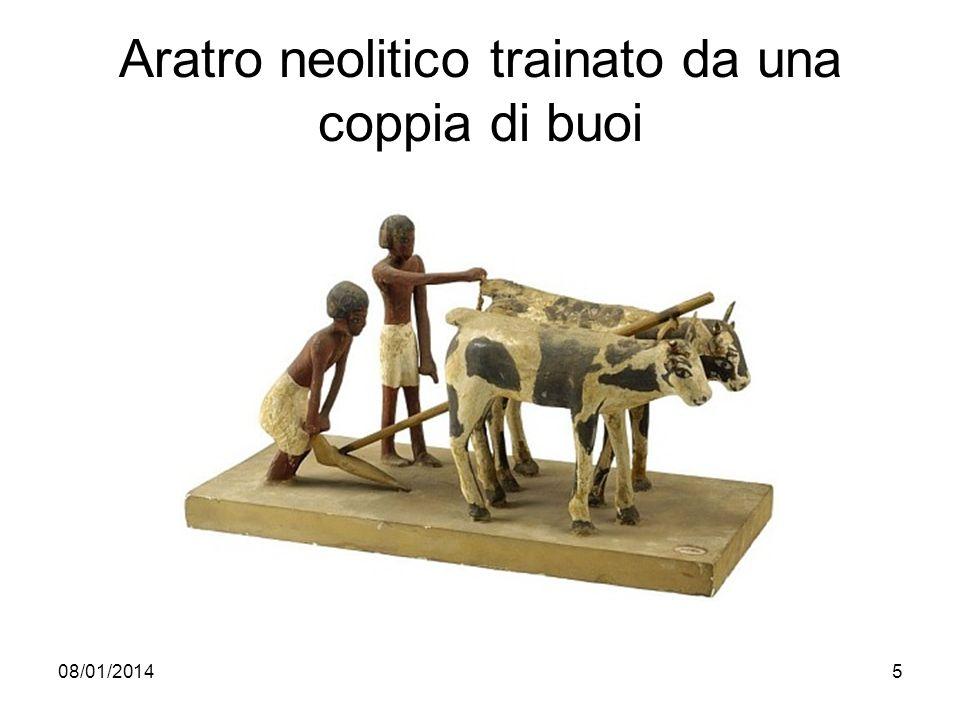 08/01/20145 Aratro neolitico trainato da una coppia di buoi