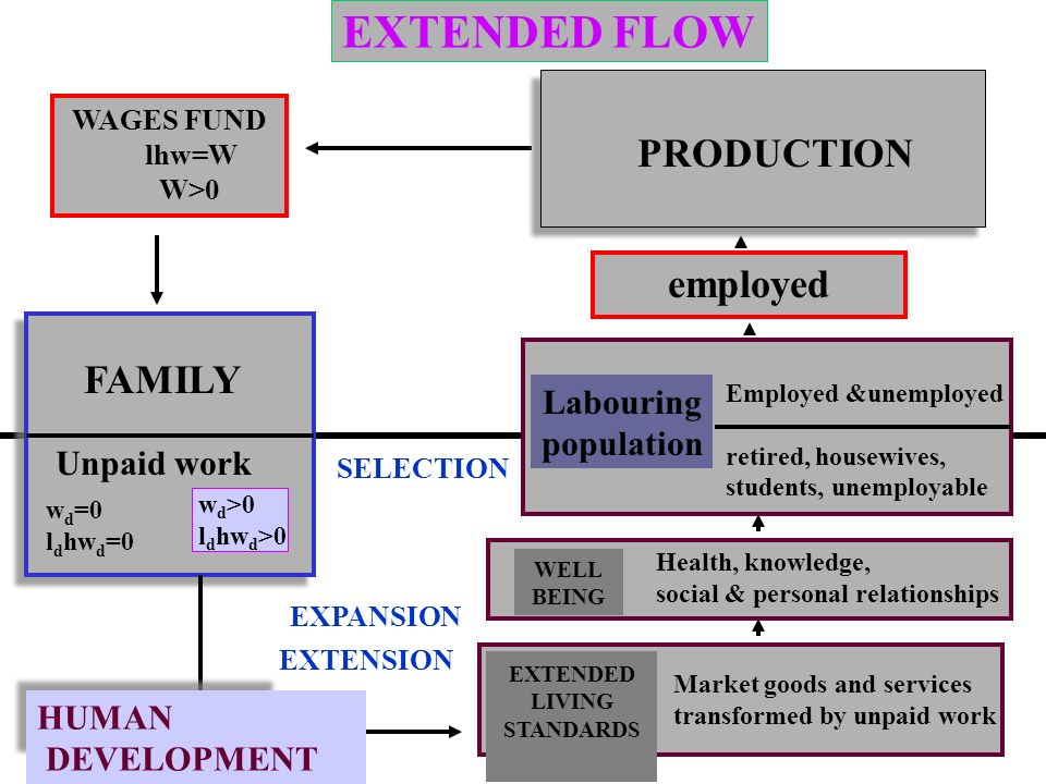 TRADITIONAL COOPERATIVE FLOW FAMILIES FIRMS