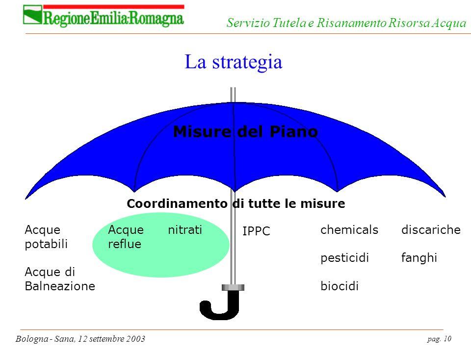 pag. 10 Bologna - Sana, 12 settembre 2003 Servizio Tutela e Risanamento Risorsa Acqua La strategia Acque reflue nitrati IPPC chemicals pesticidi bioci