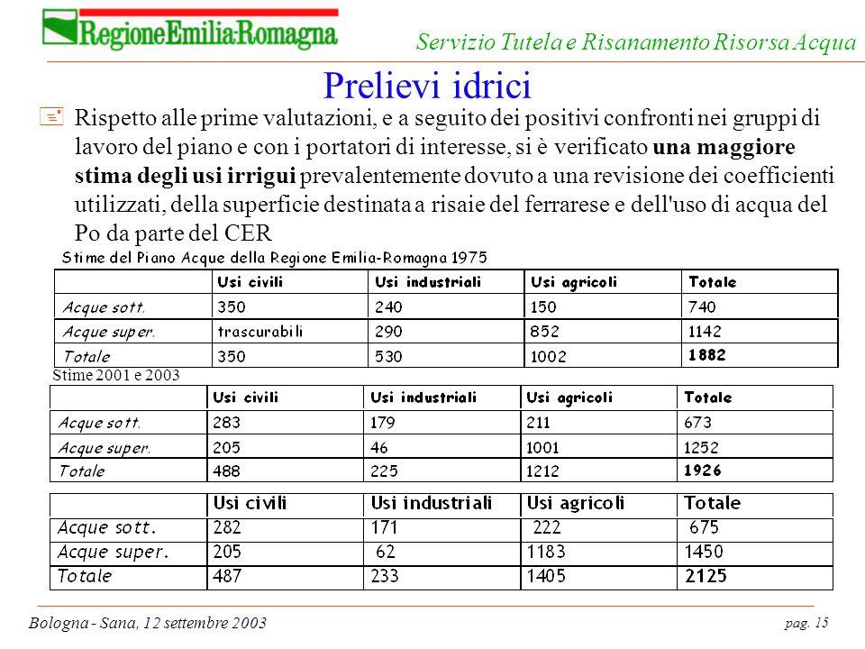 pag. 15 Bologna - Sana, 12 settembre 2003 Servizio Tutela e Risanamento Risorsa Acqua Prelievi idrici Stime 2001 e 2003 +Rispetto alle prime valutazio