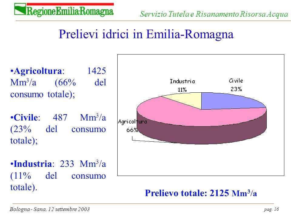 pag. 16 Bologna - Sana, 12 settembre 2003 Servizio Tutela e Risanamento Risorsa Acqua Prelievi idrici in Emilia-Romagna Agricoltura: 1425 Mm 3 /a (66%
