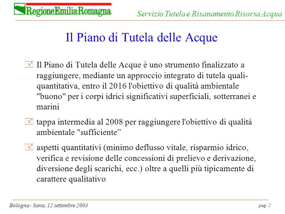pag. 2 Bologna - Sana, 12 settembre 2003 Servizio Tutela e Risanamento Risorsa Acqua Il Piano di Tutela delle Acque +Il Piano di Tutela delle Acque è