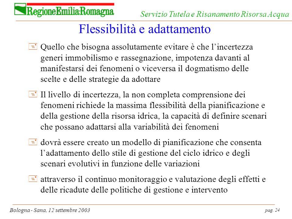 pag. 24 Bologna - Sana, 12 settembre 2003 Servizio Tutela e Risanamento Risorsa Acqua Flessibilità e adattamento +Quello che bisogna assolutamente evi