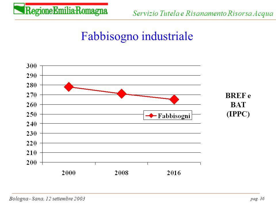 pag. 36 Bologna - Sana, 12 settembre 2003 Servizio Tutela e Risanamento Risorsa Acqua Fabbisogno industriale BREF e BAT (IPPC)