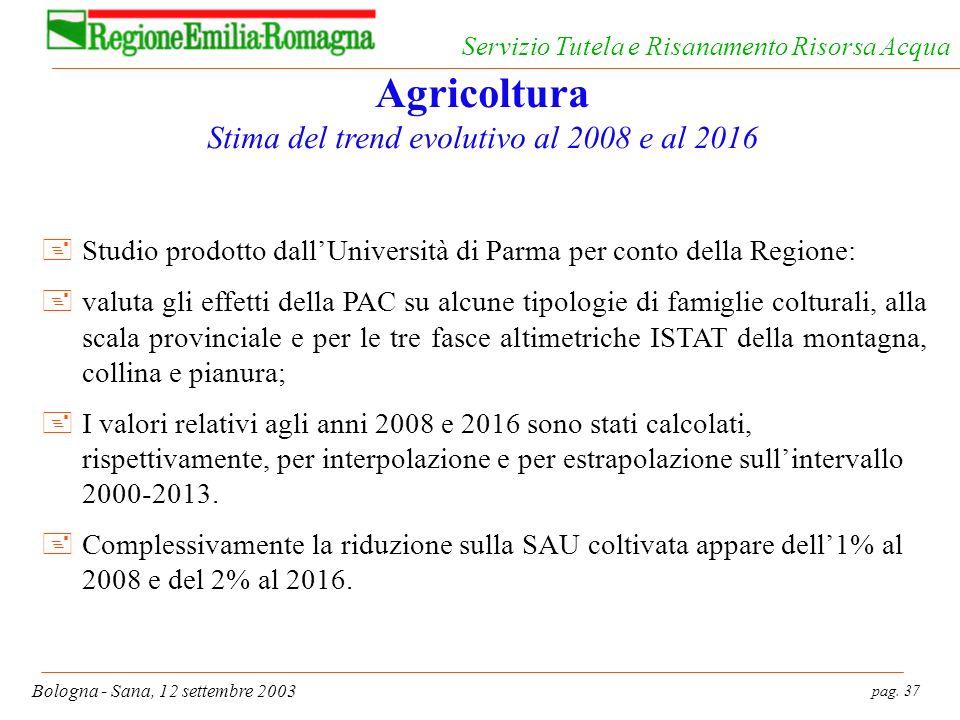 pag. 37 Bologna - Sana, 12 settembre 2003 Servizio Tutela e Risanamento Risorsa Acqua Agricoltura Stima del trend evolutivo al 2008 e al 2016 +Studio