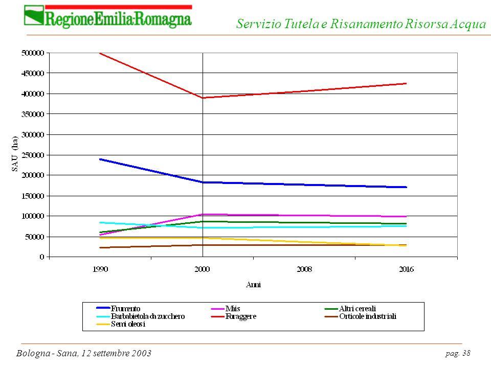pag. 38 Bologna - Sana, 12 settembre 2003 Servizio Tutela e Risanamento Risorsa Acqua