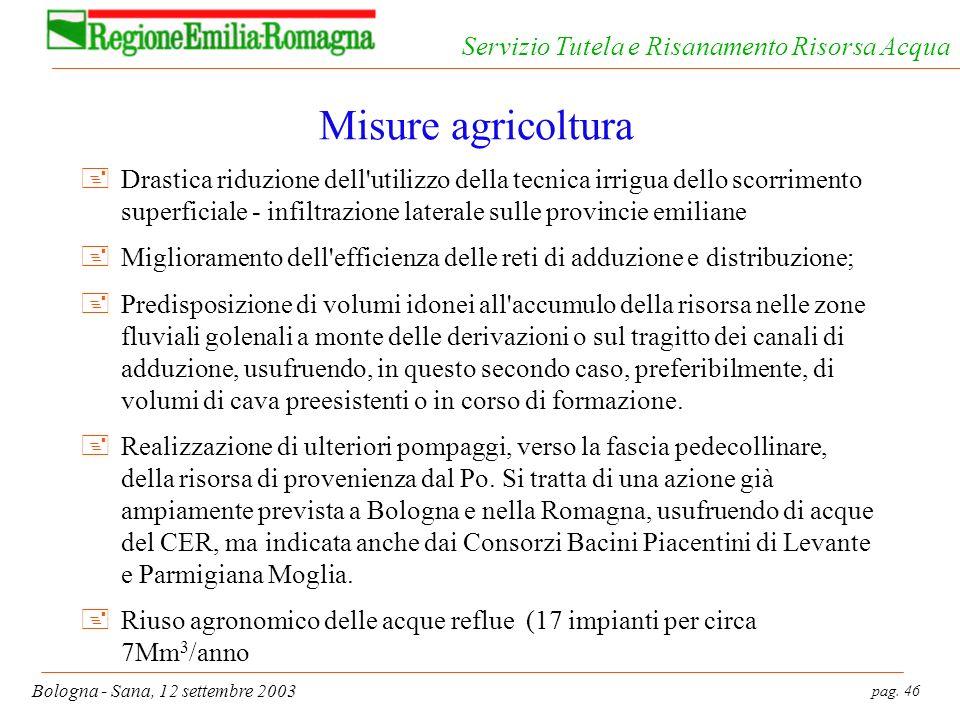 pag. 46 Bologna - Sana, 12 settembre 2003 Servizio Tutela e Risanamento Risorsa Acqua Misure agricoltura +Drastica riduzione dell'utilizzo della tecni