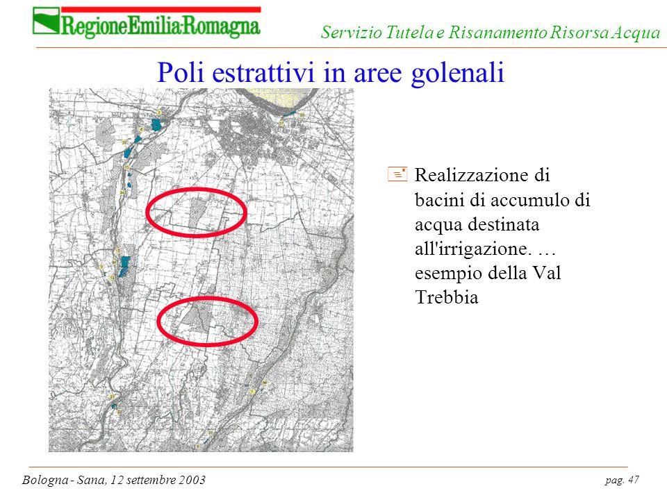 pag. 47 Bologna - Sana, 12 settembre 2003 Servizio Tutela e Risanamento Risorsa Acqua Poli estrattivi in aree golenali +Realizzazione di bacini di acc