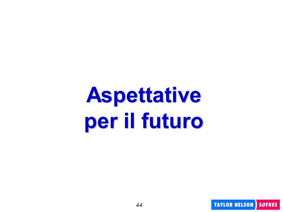 44 Aspettative per il futuro