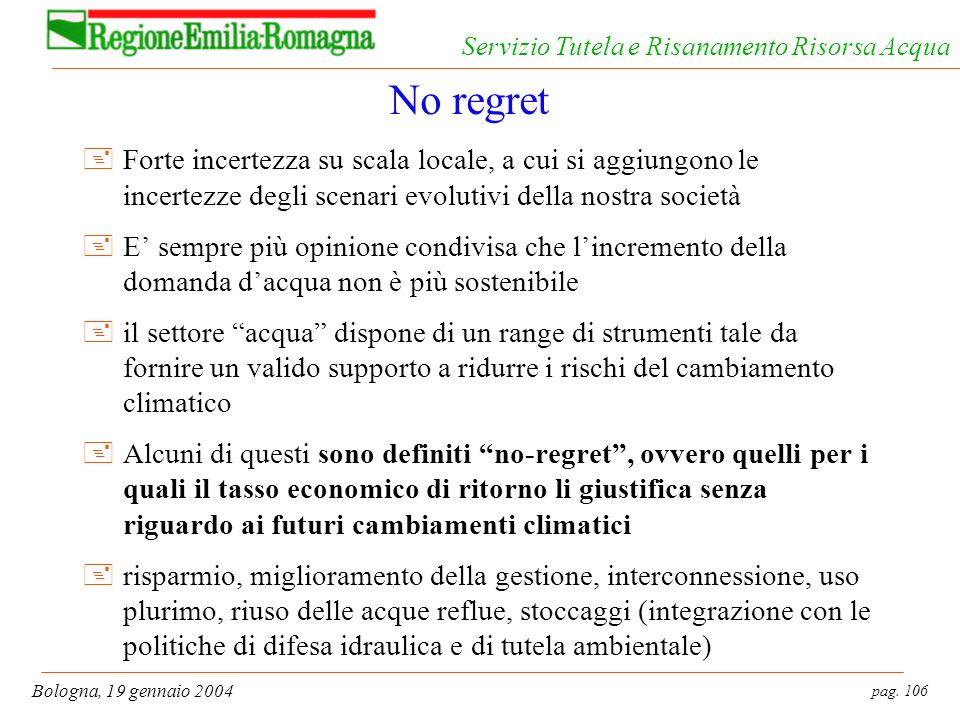 pag. 106 Bologna, 19 gennaio 2004 Servizio Tutela e Risanamento Risorsa Acqua No regret +Forte incertezza su scala locale, a cui si aggiungono le ince