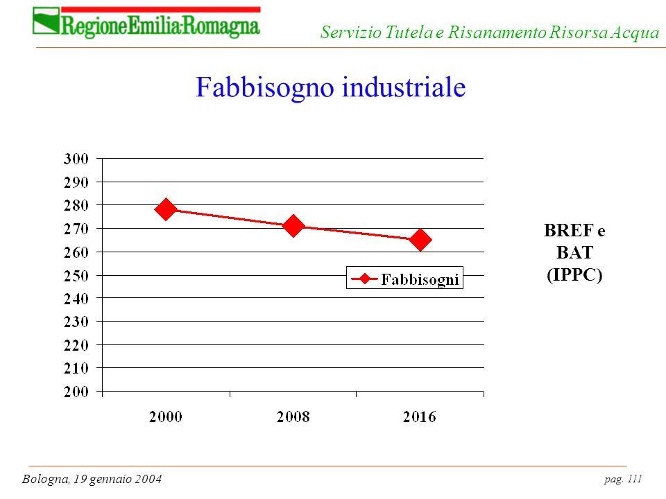 pag. 111 Bologna, 19 gennaio 2004 Servizio Tutela e Risanamento Risorsa Acqua Fabbisogno industriale BREF e BAT (IPPC)