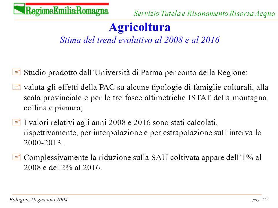pag. 112 Bologna, 19 gennaio 2004 Servizio Tutela e Risanamento Risorsa Acqua Agricoltura Stima del trend evolutivo al 2008 e al 2016 +Studio prodotto