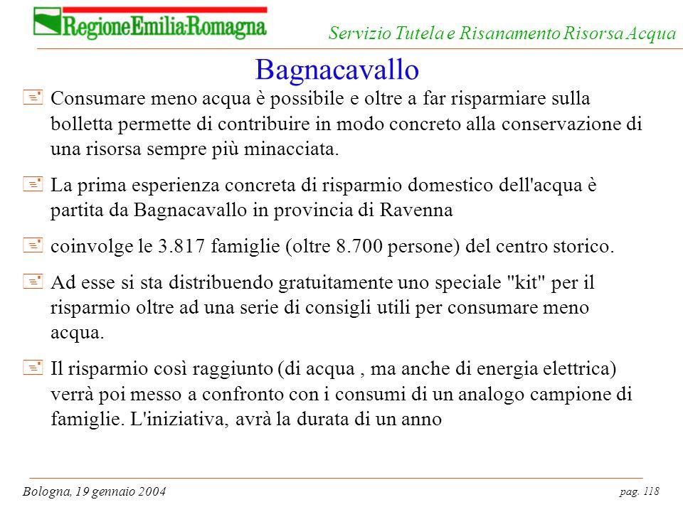 pag. 118 Bologna, 19 gennaio 2004 Servizio Tutela e Risanamento Risorsa Acqua Bagnacavallo +Consumare meno acqua è possibile e oltre a far risparmiare