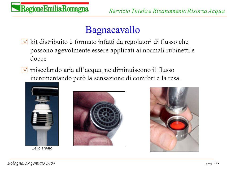 pag. 119 Bologna, 19 gennaio 2004 Servizio Tutela e Risanamento Risorsa Acqua Bagnacavallo +kit distribuito è formato infatti da regolatori di flusso