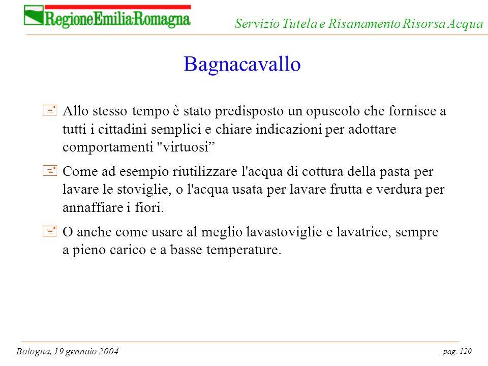 pag. 120 Bologna, 19 gennaio 2004 Servizio Tutela e Risanamento Risorsa Acqua Bagnacavallo +Allo stesso tempo è stato predisposto un opuscolo che forn