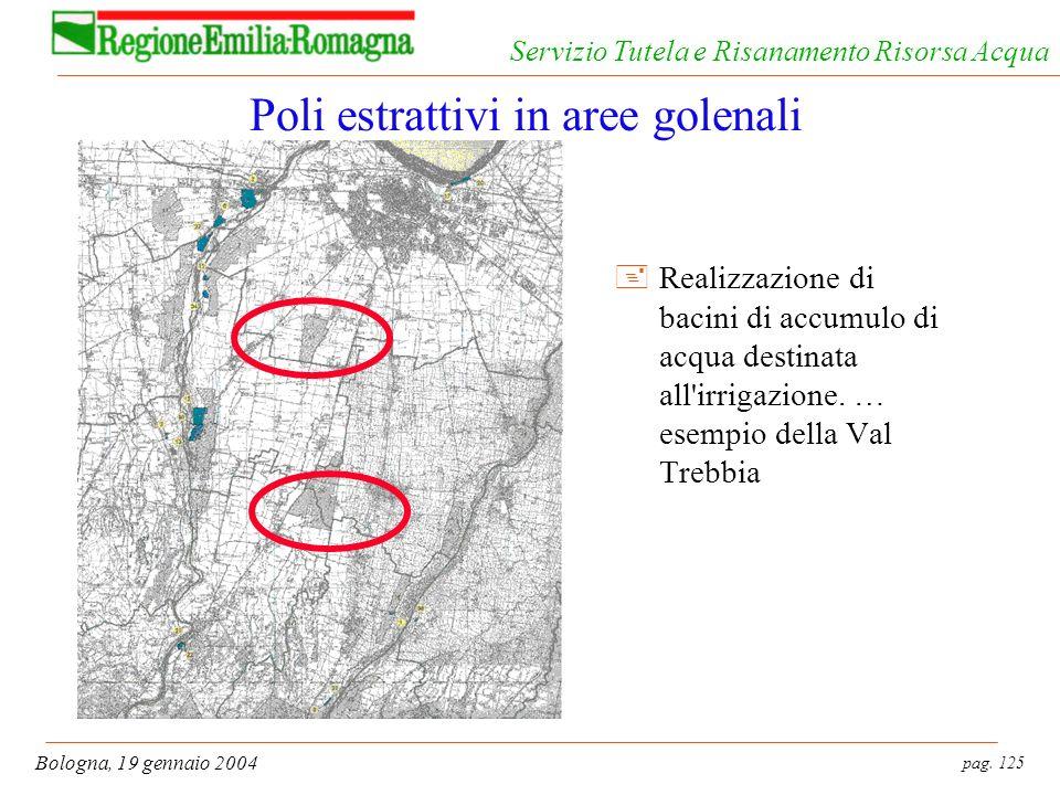 pag. 125 Bologna, 19 gennaio 2004 Servizio Tutela e Risanamento Risorsa Acqua Poli estrattivi in aree golenali +Realizzazione di bacini di accumulo di