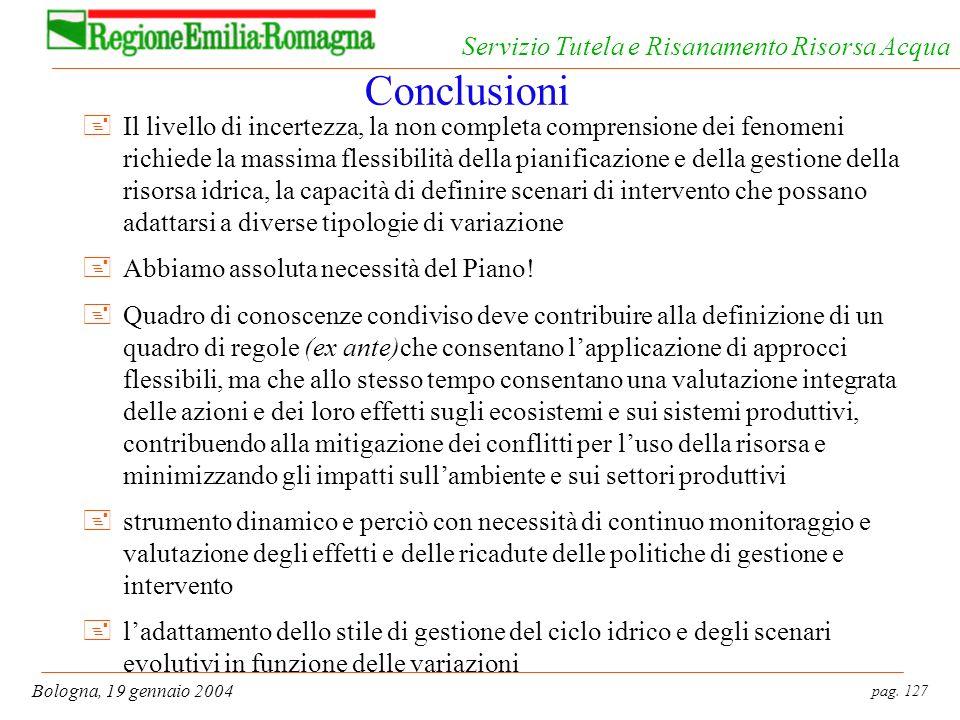 pag. 127 Bologna, 19 gennaio 2004 Servizio Tutela e Risanamento Risorsa Acqua Conclusioni +Il livello di incertezza, la non completa comprensione dei